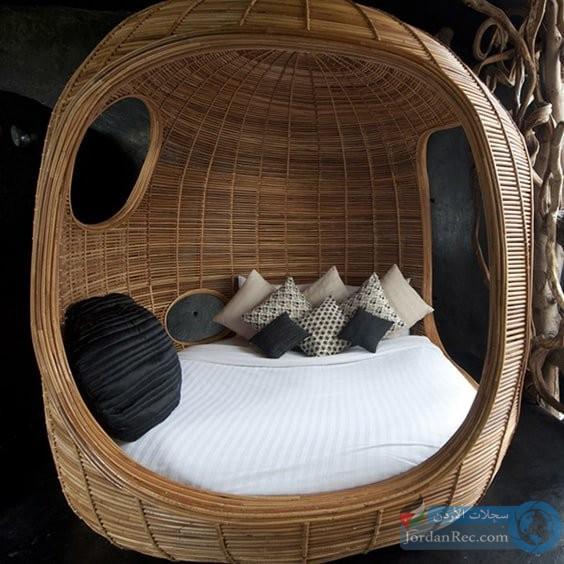 سرير البيضة