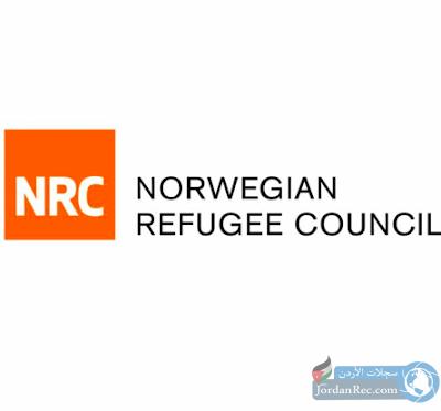 المجلس النرويجي للاجئين|فرص تطوع مغطية المصاريف