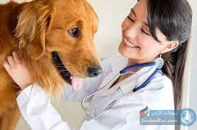 مطلوب دكتورة بيطرية للعمل لدى شركة أدوية