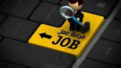 العمل: توفر 500 فرصة عمل للأردنيين
